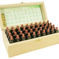 bach box