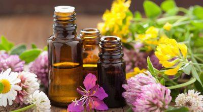 terapia-florala-bach-3